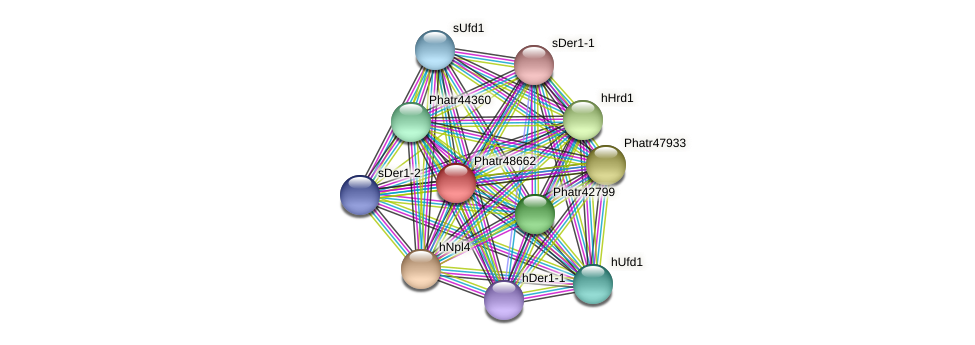 Phatr48662 protein (Phaeodactylum tricornutum) - STRING interaction network