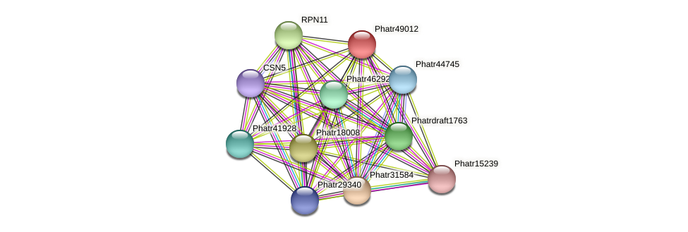 Phatr49012 protein (Phaeodactylum tricornutum) - STRING interaction network