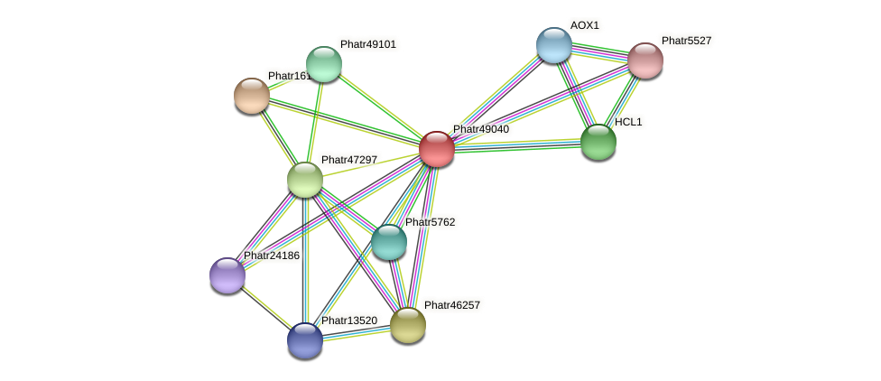 Phatr49040 protein (Phaeodactylum tricornutum) - STRING interaction network