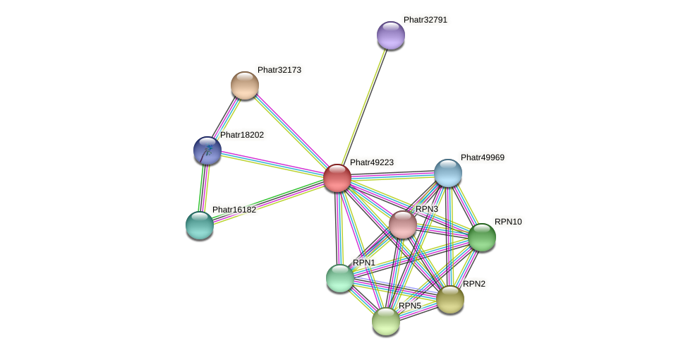 Phatr49223 protein (Phaeodactylum tricornutum) - STRING interaction network