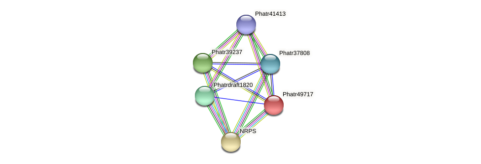 Phatr49717 protein (Phaeodactylum tricornutum) - STRING interaction network