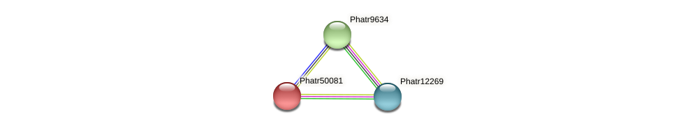 Phatr50081 protein (Phaeodactylum tricornutum) - STRING interaction network