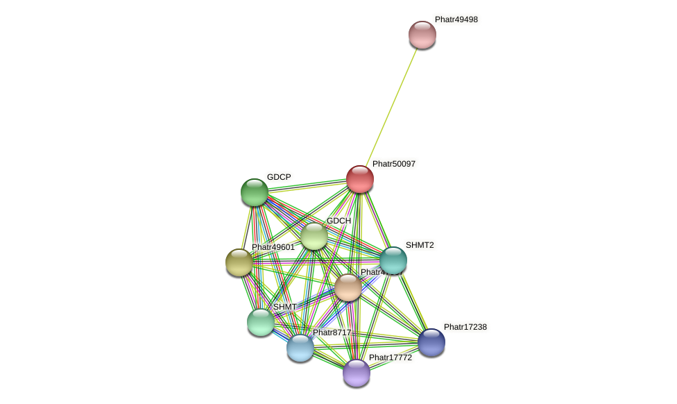 Phatr50097 protein (Phaeodactylum tricornutum) - STRING interaction network