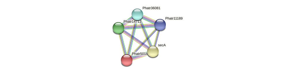 Phatr50183 protein (Phaeodactylum tricornutum) - STRING interaction network