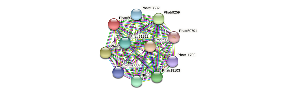 Phatr50212 protein (Phaeodactylum tricornutum) - STRING interaction network