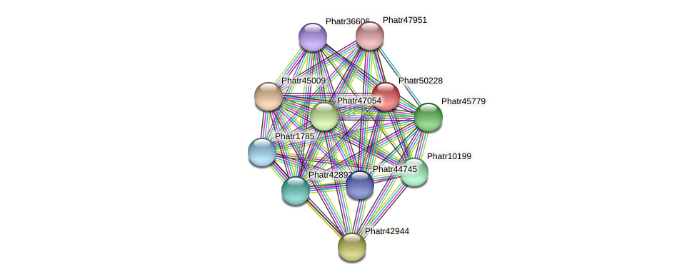 Phatr50228 protein (Phaeodactylum tricornutum) - STRING interaction network
