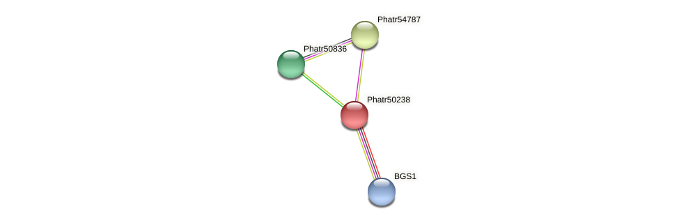 Phatr50238 protein (Phaeodactylum tricornutum) - STRING interaction network