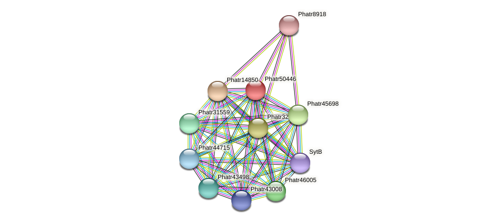 Phatr50446 protein (Phaeodactylum tricornutum) - STRING interaction network