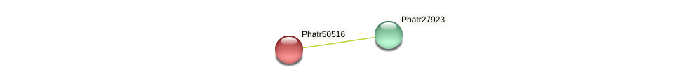 Phatr50516 protein (Phaeodactylum tricornutum) - STRING interaction network