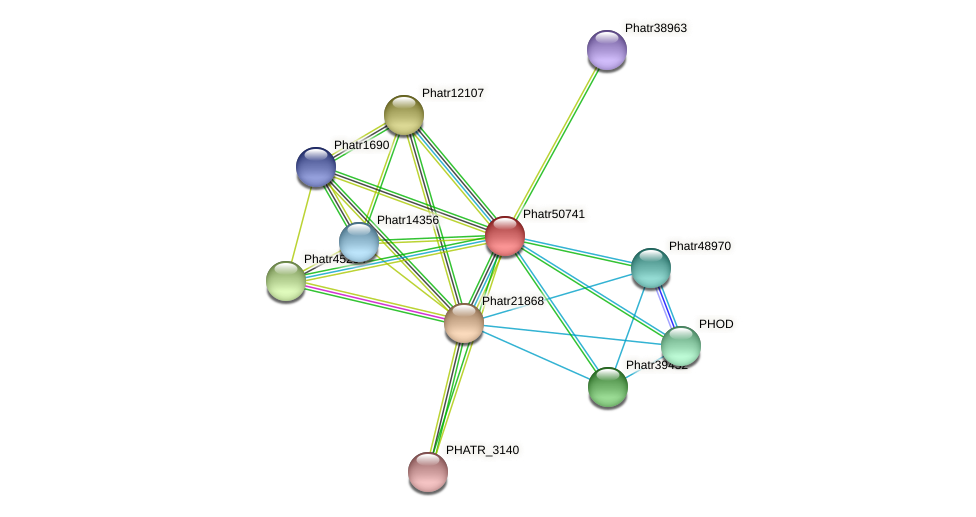 Phatr50741 protein (Phaeodactylum tricornutum) - STRING interaction network