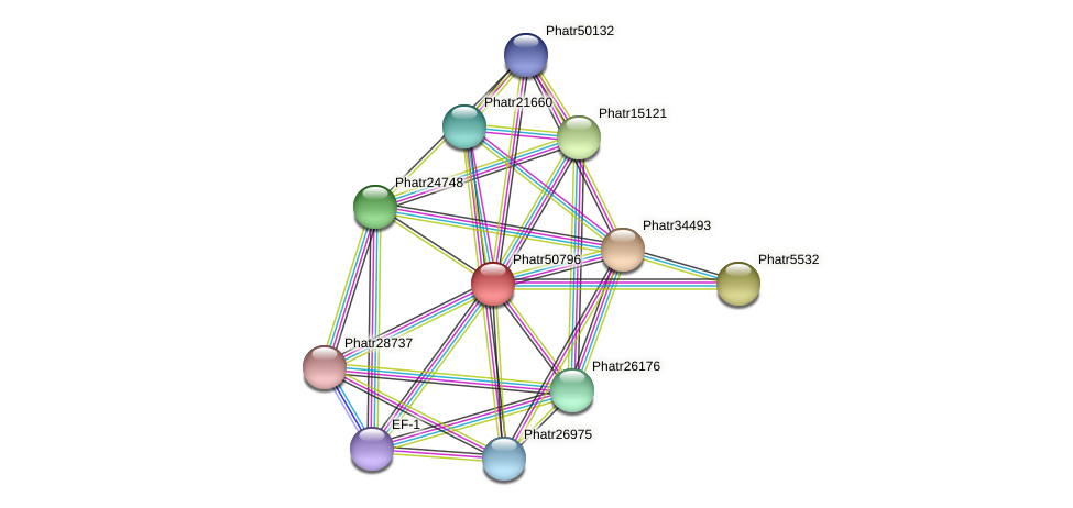 Phatr50796 protein (Phaeodactylum tricornutum) - STRING interaction network