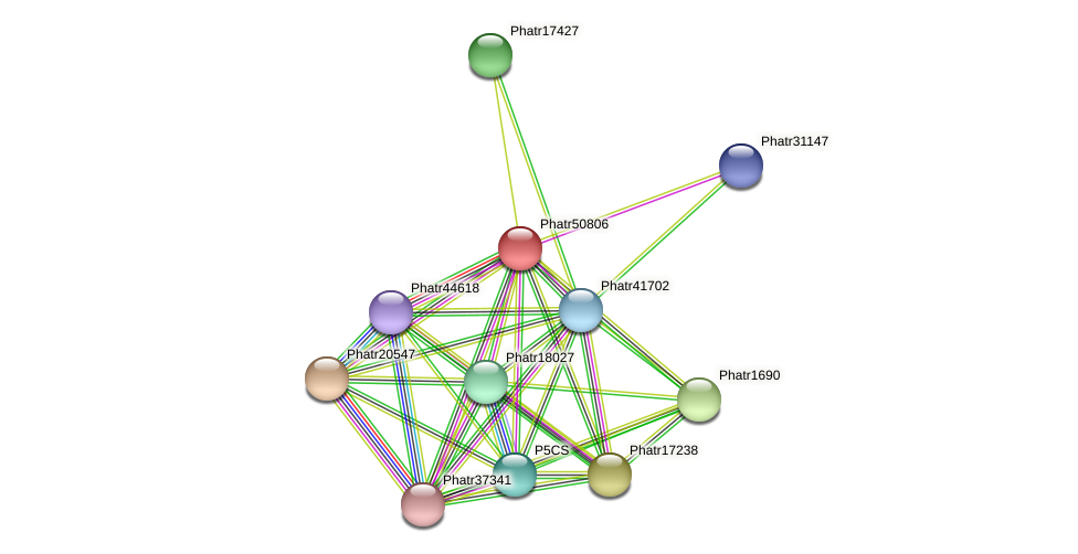 Phatr50806 protein (Phaeodactylum tricornutum) - STRING interaction network