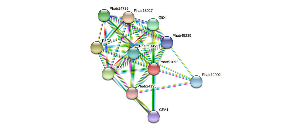 Phatr51092 protein (Phaeodactylum tricornutum) - STRING interaction network