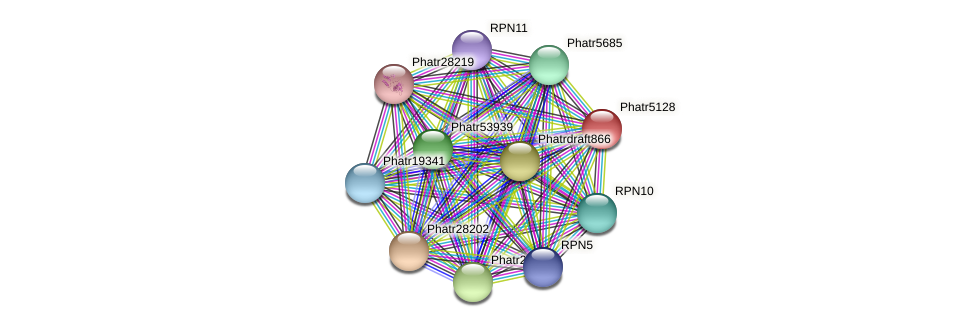 Phatr5128 protein (Phaeodactylum tricornutum) - STRING interaction network