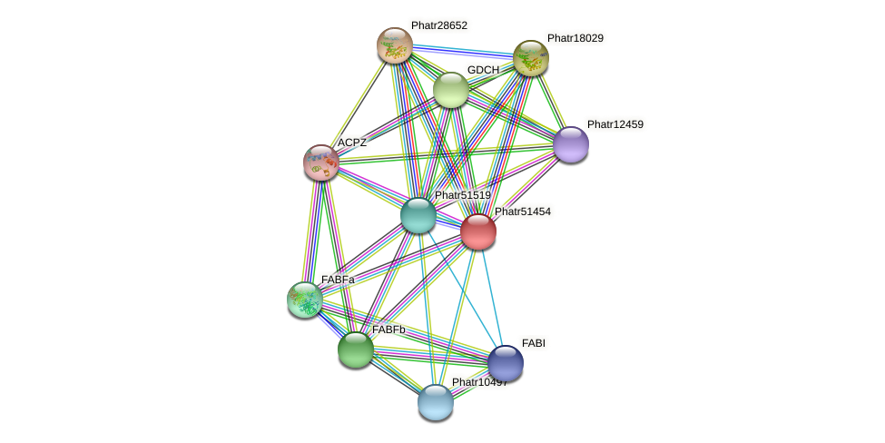 Phatr51454 protein (Phaeodactylum tricornutum) - STRING interaction network