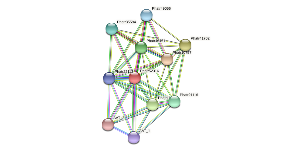 Phatr52316 protein (Phaeodactylum tricornutum) - STRING interaction network