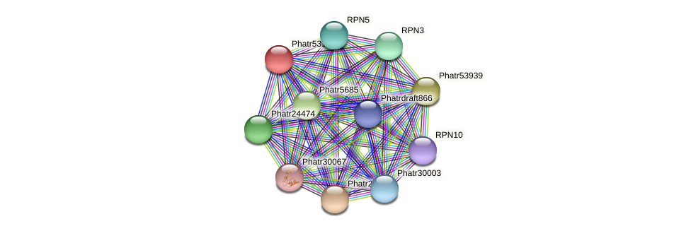 Phatr5311 protein (Phaeodactylum tricornutum) - STRING interaction network