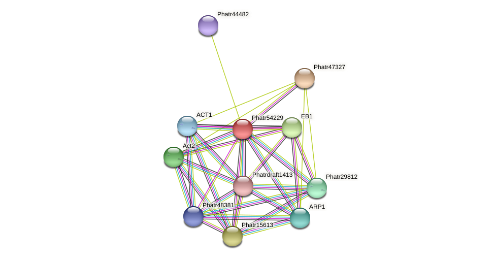 Phatr54229 protein (Phaeodactylum tricornutum) - STRING interaction network