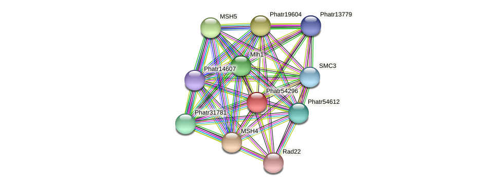 Phatr54296 protein (Phaeodactylum tricornutum) - STRING interaction network
