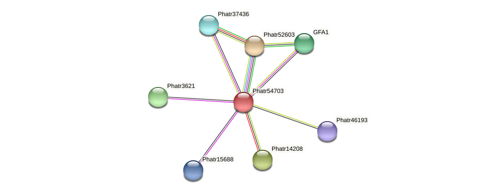 Phatr54703 protein (Phaeodactylum tricornutum) - STRING interaction network