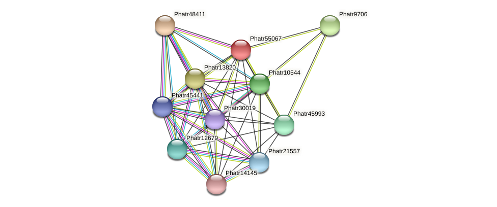 Phatr55067 protein (Phaeodactylum tricornutum) - STRING interaction network