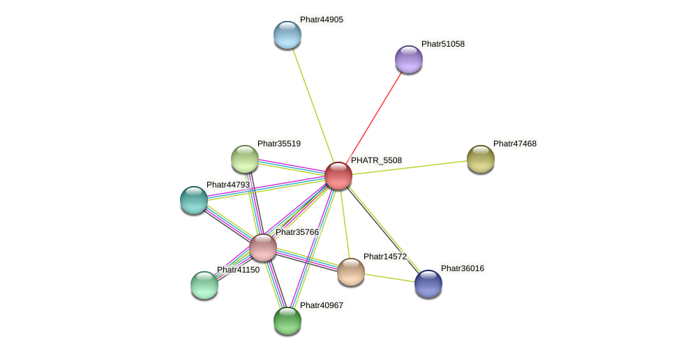 PHATR_5508 protein (Phaeodactylum tricornutum) - STRING interaction network