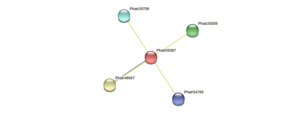 Phatr55087 protein (Phaeodactylum tricornutum) - STRING interaction network