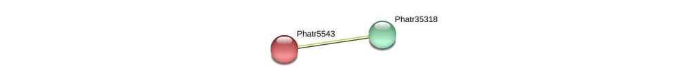 Phatr5543 protein (Phaeodactylum tricornutum) - STRING interaction network
