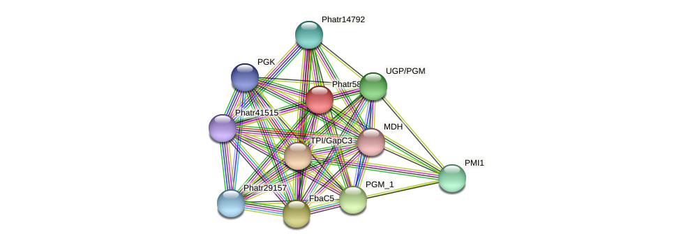 Phatr5857 protein (Phaeodactylum tricornutum) - STRING interaction network