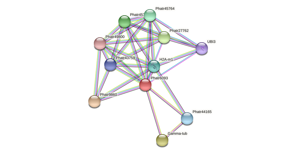 Phatr6093 protein (Phaeodactylum tricornutum) - STRING interaction network