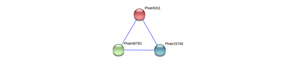 Phatr6311 protein (Phaeodactylum tricornutum) - STRING interaction network