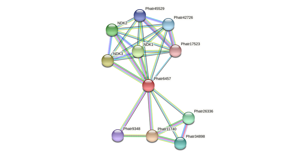 Phatr6457 protein (Phaeodactylum tricornutum) - STRING interaction network