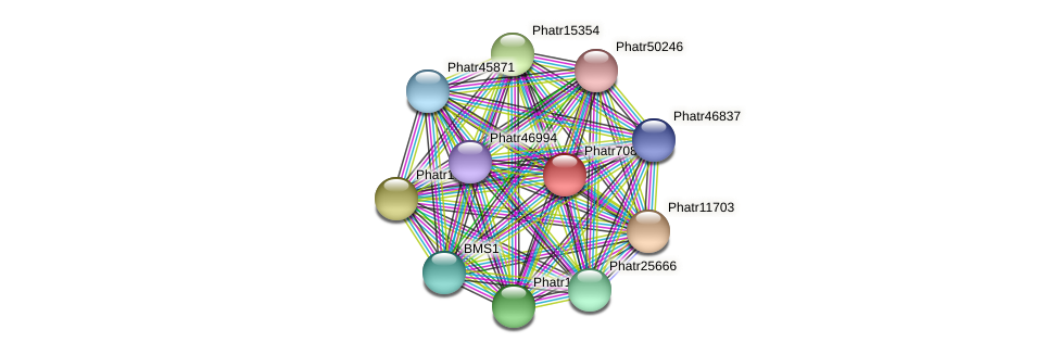 Phatr708 protein (Phaeodactylum tricornutum) - STRING interaction network