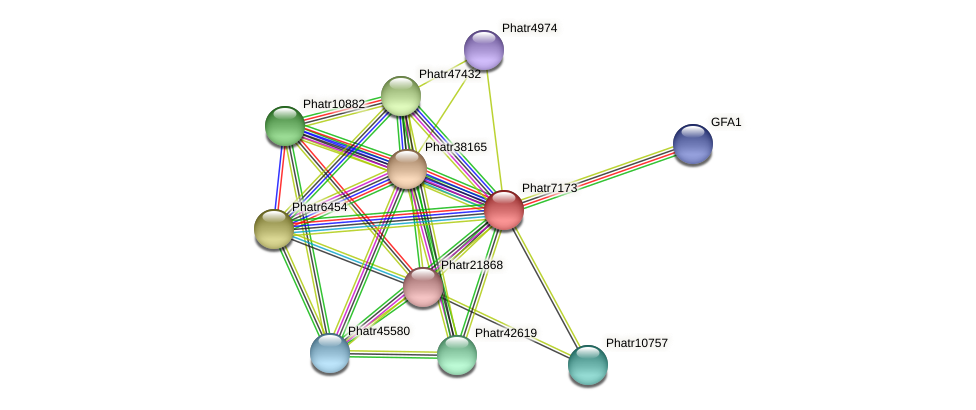 Phatr7173 protein (Phaeodactylum tricornutum) - STRING interaction network