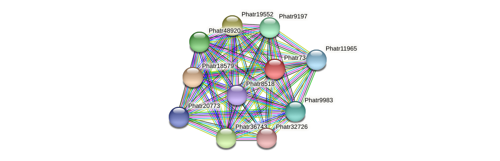 Phatr7349 protein (Phaeodactylum tricornutum) - STRING interaction network