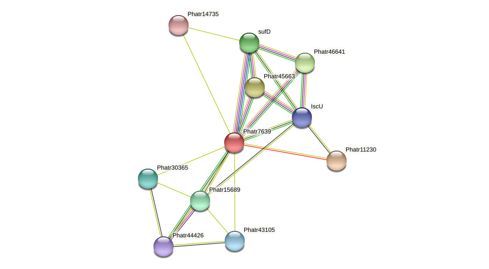 Phatr7639 protein (Phaeodactylum tricornutum) - STRING interaction network