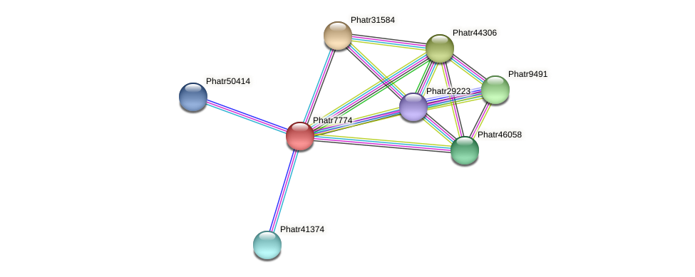 Phatr7774 protein (Phaeodactylum tricornutum) - STRING interaction network