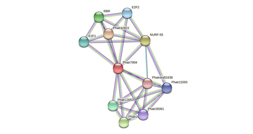 Phatr7959 protein (Phaeodactylum tricornutum) - STRING interaction network