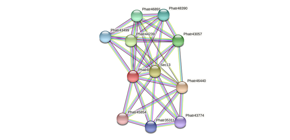 Phatr8301 protein (Phaeodactylum tricornutum) - STRING interaction network
