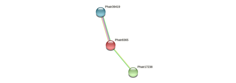 Phatr8365 protein (Phaeodactylum tricornutum) - STRING interaction network