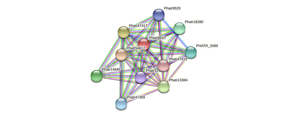 Phatr8810 protein (Phaeodactylum tricornutum) - STRING interaction network