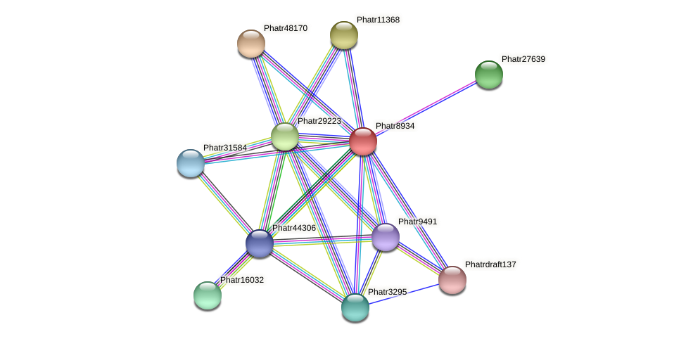 Phatr8934 protein (Phaeodactylum tricornutum) - STRING interaction network
