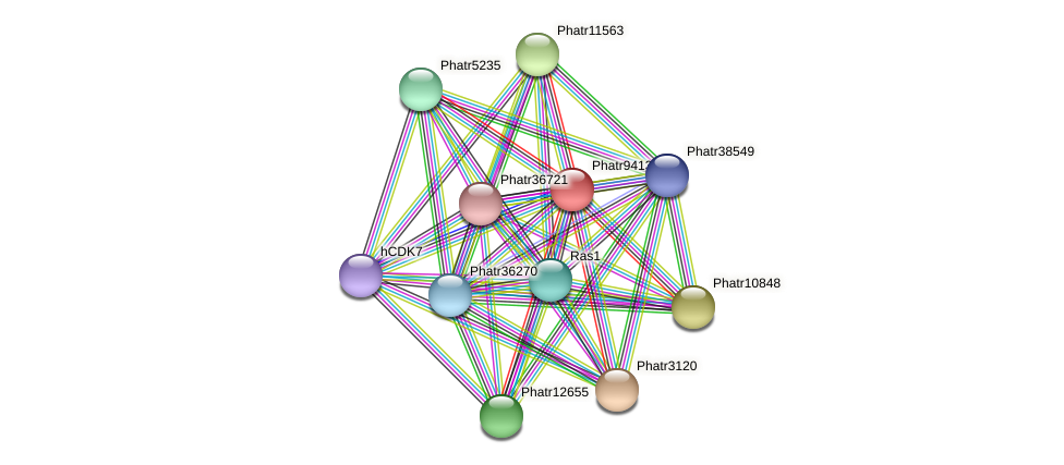 Phatr9413 protein (Phaeodactylum tricornutum) - STRING interaction network