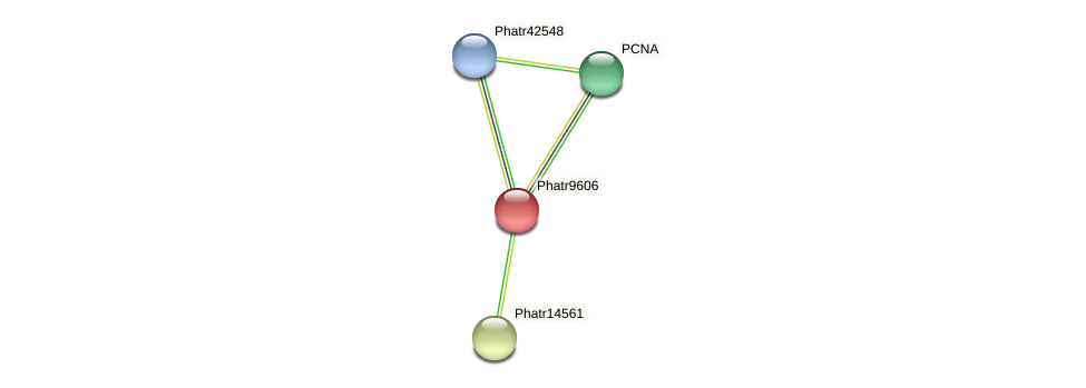 Phatr9606 protein (Phaeodactylum tricornutum) - STRING interaction network