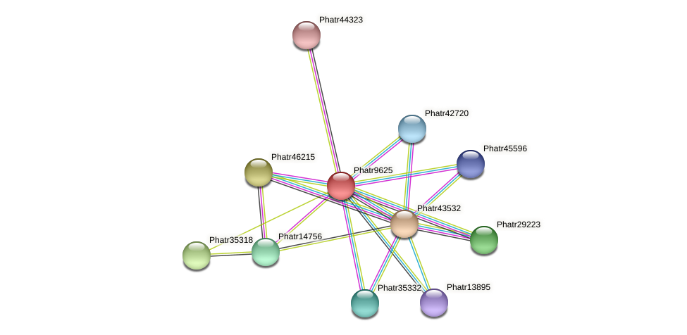 Phatr9625 protein (Phaeodactylum tricornutum) - STRING interaction network