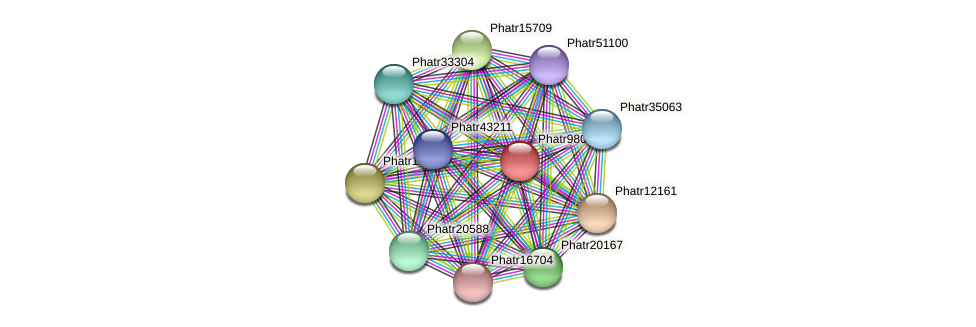 Phatr9806 protein (Phaeodactylum tricornutum) - STRING interaction network