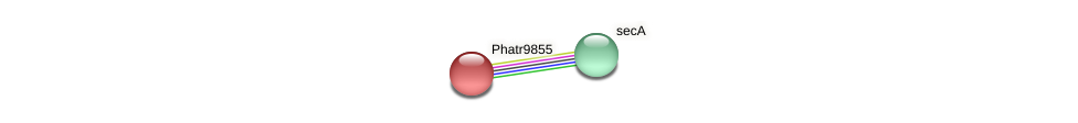Phatr9855 protein (Phaeodactylum tricornutum) - STRING interaction network