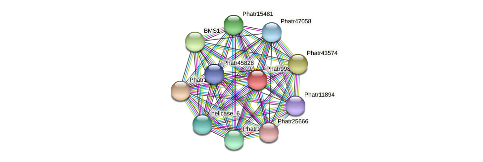 Phatr9989 protein (Phaeodactylum tricornutum) - STRING interaction network
