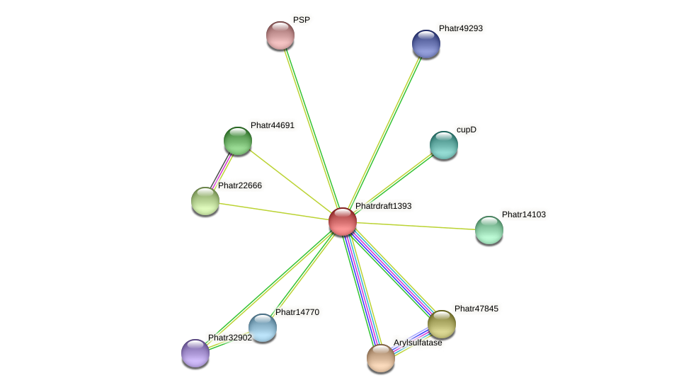 Phatrdraft1393 protein (Phaeodactylum tricornutum) - STRING interaction network