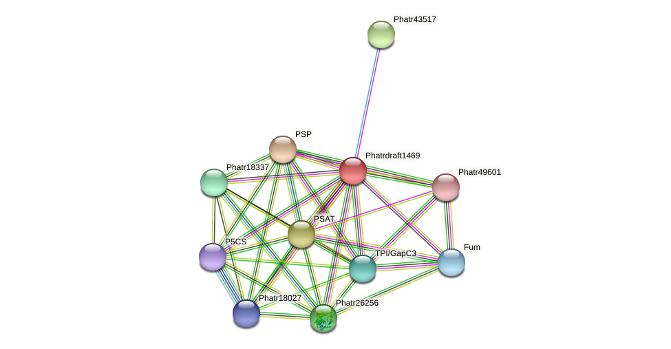 Phatrdraft1469 protein (Phaeodactylum tricornutum) - STRING interaction network